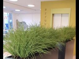 Artificial Hangend gras per strekkende meter opgemaakt