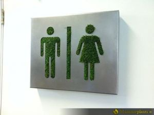 Toiletbord M/V